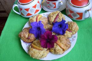 Tvarohové sušienky s nektáriniek