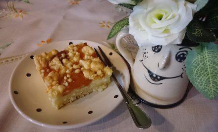 Rýchly a báječný mrveničkový koláč s pudingom a marhuľami