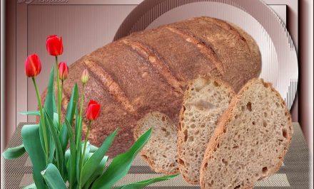 Jindřiškin kváskový chlebík – chladničkové kysnutie