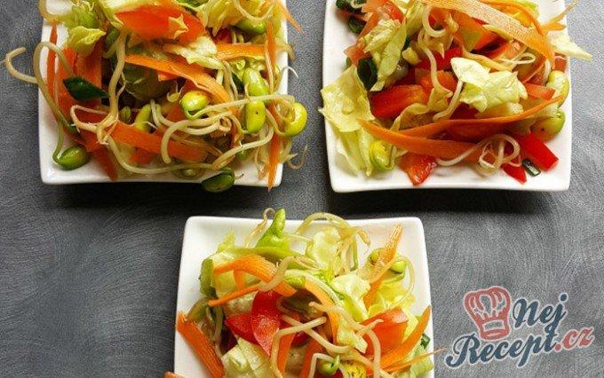 Salát z naklíčené sóji