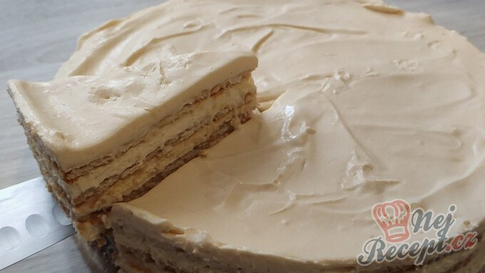 Salkové šílenství – nepečený salkový dort se sušenkami